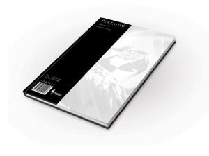 REGISTRU A4 100 FILE Platinum