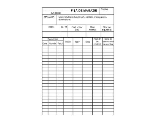 FISE DE MAGAZIE A5 (100 buc/set)