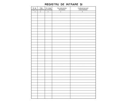 REGISTRU INTRARE-IESIRE vertical A4