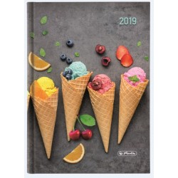 AGENDA A5 DATATA 352 FILE + 16 FILE ZENTANGLE MOTIV ICE CREAM 2019